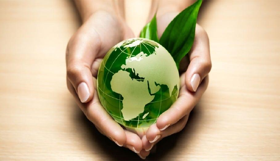 La société Eco environnement